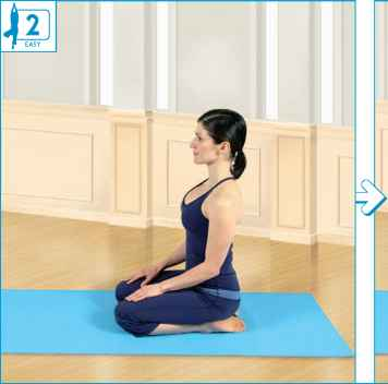 Seated Yoga Mudra Pose Yoga