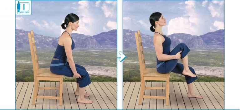 Seated Knee Chest