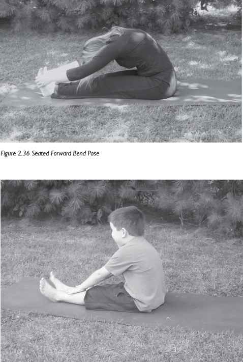 Seated Forward Fold For Children